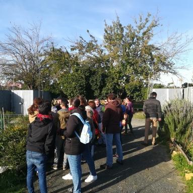 Visita a los huertos del Alamillo
